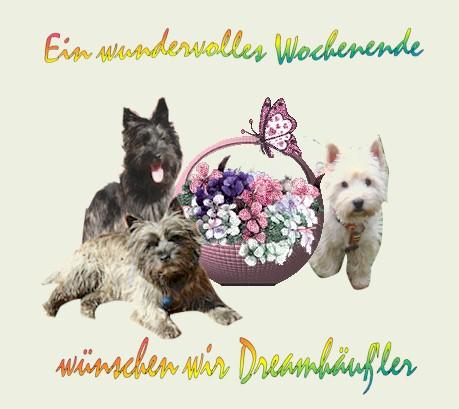 An den Beitrag angehängtes Bild: http://www.vom-dreamhouse.de/assets/images/fruhling1.jpg