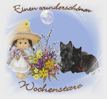 An den Beitrag angehängtes Bild: http://www.vom-dreamhouse.de/assets/images/gb3.jpg